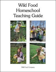 Wild Food Homeschool Teaching Guide