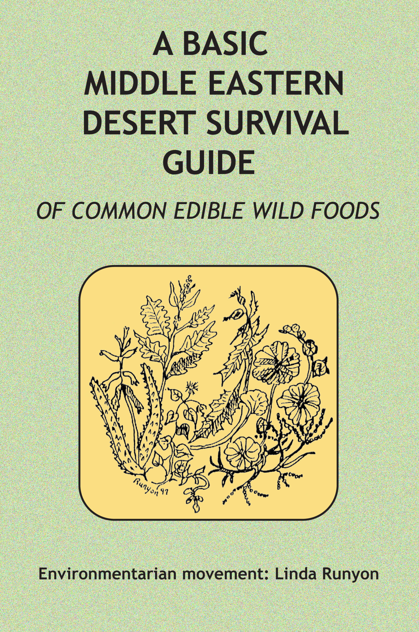 A Basic Middle Eastern Desert Survival Guide cover