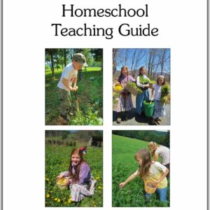 Homeschool Teaching Guide cover