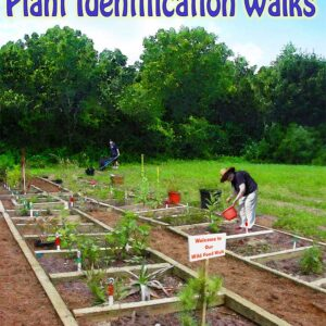 Promote Wild Food Certainty through Plant Identification Walks cover